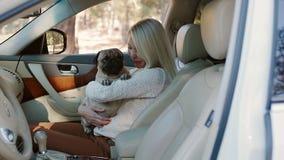 Pug, der auf den Händen der Frau im Auto sitzt stock video footage