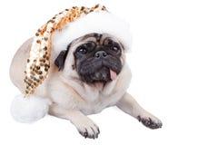 Pug dog. Funny pug dog laying down wearing  a christmas sparkle  hat Stock Photo