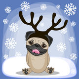 Pug Dog with antlers Stock Photography