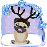 Pug Dog with antlers Stock Photos