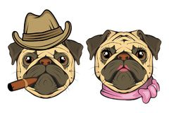 Pug dog boy and girl. Head of an pug. Pets for design. Vector graphics to design royalty free illustration