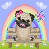 Pug Dog with flower Stock Photos