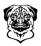 Pug dog. Head on a white background stock illustration