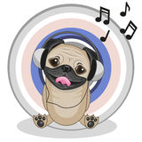 Pug Dog with headphones Stock Image
