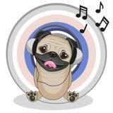 Pug Dog with headphones Stock Image
