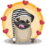 Pug Dog with hearts Royalty Free Stock Photos