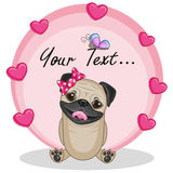 Pug Dog with hearts Stock Photography
