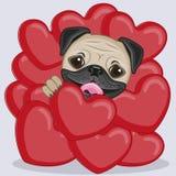 Pug Dog in hearts stock illustration