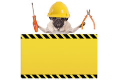 Pug dog holding pliers and screwdriver behind yellow warning sign Stock Photo