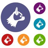 Pug dog icons set Royalty Free Stock Image