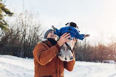 Pug dog walking with his master. Man throwing his pet up for fun. Puppy wearing winter coat. Pug dog walking with his master in winter forest. Man throwing his stock photography