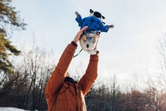 Pug dog walking with his master. Man throwing his pet up for fun. Puppy wearing winter coat. Pug dog walking with his master in winter forest. Man throwing his stock image