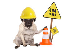 Pug dog with yellow constructor safety helmet and cone and 404 error and dead end sign on wooden pole Stock Images