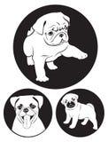Pug-hond vector illustratie