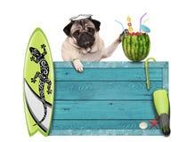 Pug hond met blauwe uitstekende houten die strandteken, surfplank en de cocktail van de de zomerwatermeloen, op witte achtergrond Stock Afbeeldingen