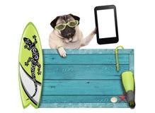 Pug hond op vakantie met blauw uitstekend houten strandteken, surfplank en mobiele die telefoon/tablet, op witte achtergrond word Stock Foto