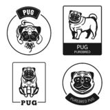 Pug icon set, simple style vector illustration