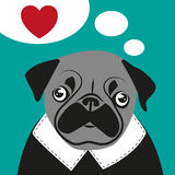 Pug love card hipster funny valentines birthday stock image