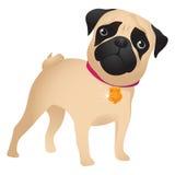 Pug puppy Stock Foto's