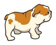 Pug puppy. Cartoon illustration of a pug puppy royalty free illustration