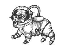 Pug puppy in armour space suit engraving vector. Pug puppy in armour space suit sketch engraving vector illustration. Scratch board style imitation. Black and vector illustration