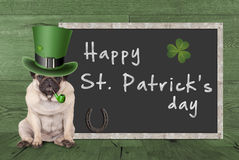 Pug puppy dog with leprechaun hat for st. patrick`s day smoking pipe, sitting next blank chalkboard sign with horseshoe and s. Cute pug puppy dog with leprechaun Stock Photos