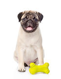 Pug puppy with toy. isolated on white background Stock Photo