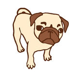 Pug puppy Vector illustratie Stock Afbeeldingen