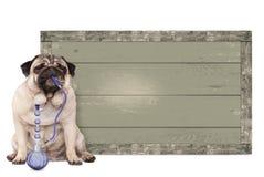 Pug rokende shishawaterpijp van de puppyhond, die naast uitstekend houten teken, op witte achtergrond zitten Stock Afbeelding
