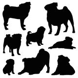 Pug silhouette vector illustration set. Isolated on white background different poses stock illustration