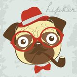 Pug smoking pipe Royalty Free Stock Image