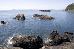Υγιής θάλασσα Puget κόλπων Bowman Στοκ Φωτογραφία