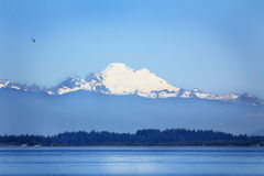 Puget Sound and Mt Baker Royalty Free Stock Photos