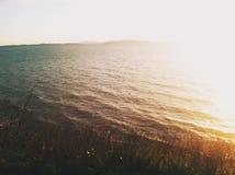 Puget Sound strand Arkivfoton