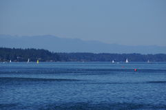Puget sound. The Puget sound on a summer day with sail boats Stock Images