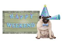 Pughündchen mit blauem Parteihut und -horn und grünes Holzschild mit glücklichem Wochenende des Textes stockfotos