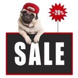 Pughündchen, welches die rote Kappe, hängend mit den Tatzen auf Tafelzeichen mit Textverkauf und 20 Prozent heruntergesetzt trägt Lizenzfreies Stockfoto