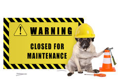 Pughund mit gelbem Erbauerschutzhelm und Warnzeichen mit Text schlossen für Wartung stockfotografie