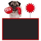 Pughundeboxer mit roten Boxhandschuhen mit Verkaufszeichen und leerer Tafel stockfotografie
