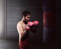 Pugilato asiatico atletico di allenamento dell'uomo Fotografia Stock