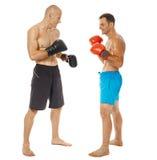 Pugilato d'allenamento di Kickboxers sul bianco Immagini Stock