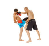 Pugilato d'allenamento di Kickboxers sul bianco Fotografia Stock