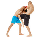 Pugilato d'allenamento di Kickboxers sul bianco Fotografie Stock