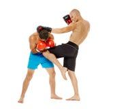 Pugilato d'allenamento di Kickboxers sul bianco Fotografie Stock Libere da Diritti