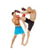 Pugilato d'allenamento di Kickboxers sul bianco Immagine Stock