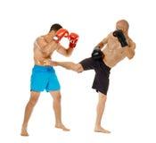 Pugilato d'allenamento di Kickboxers sul bianco Immagini Stock Libere da Diritti