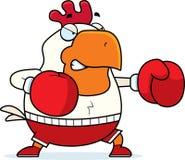 Pugilato del gallo del fumetto Fotografia Stock