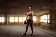 Pugile asiatico della ragazza di bellezza con i guanti rossi che stanno nella r d'inscatolamento Fotografie Stock