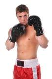 Pugile con i guanti Fotografia Stock Libera da Diritti