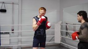 Pugile in guantoni da pugile che prepara attacco con il partner nel club di sport Perforazioni di addestramento dell'uomo del pug video d archivio